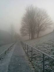Winter picture competition